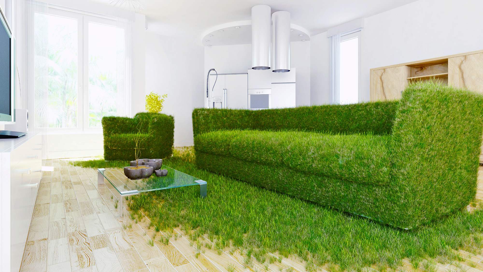 Green Your Home learning the lingo: a glossary to greening your home, from